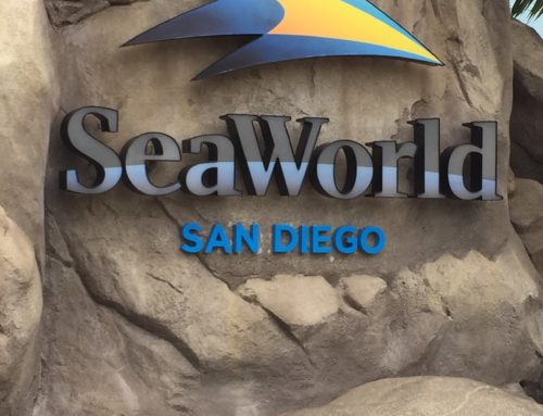 San Diego  SeaWorld – a great place to spend a day.